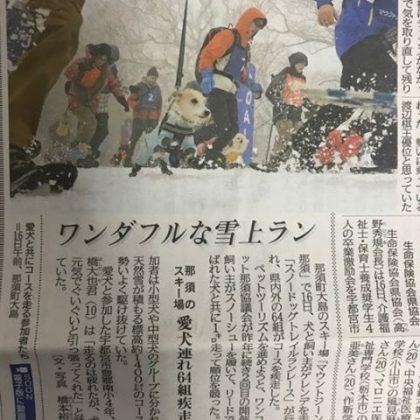 pg_wanko_12